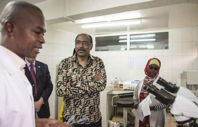 La société civile fournit des services essentiels aux Comores